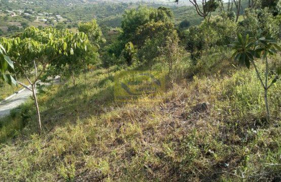Área Rural – ÓTIMA ÁREA PLANA DE 15 HECTARES PRÓXIMO DO CENTRO DA CIDADE – GRAVATÁ-PE